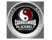Martial Arts Carrollwood Blackbelt